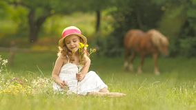 Little girl sits in a clearing, turns over the torn wild flowers and makes a bouquet from them. Slow motion stock video