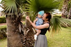 Mom shows her daughter a palm leaf holding her in her arms. A little girl sits in her mother`s arms and examines the leaf of a palm tree. she`s wearing a blue royalty free stock photo