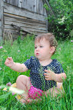 Little girl sits on a lawn of clover. Stock Image