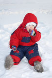 Little girl sits on snow and eats snow Royalty Free Stock Photography