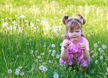 Little girl sitting Stock Images
