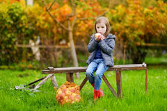 Little girl sitting on a bench on autumn day Stock Photo
