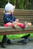 Little girl sitting on a bench and feeding pigeons Royalty Free Stock Image