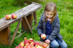 Little girl sitting eating an apple on autumn day stock photography