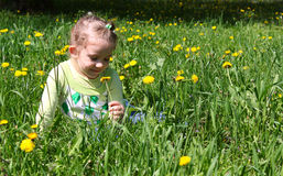 Little girl sitting in grass Stock Photography