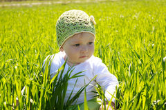 Little girl sitting on the grass Stock Image