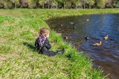 Little girl sitting on grass and looking at lake with floating ducks. Horizontal photo stock photo