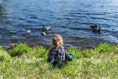 Little girl sitting on grass and looking at lake with floating ducks. Rear view. Little girl sitting on grass and looking at lake with floating ducks. Back view royalty free stock photo