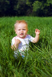 Little girl sitting on a green grass Stock Photography