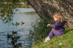 A little girl sitting on a lake side and feeding ducks Royalty Free Stock Photos