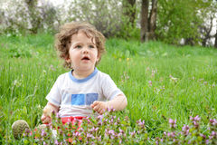 Little girl sitting in a meadow. Stock Images