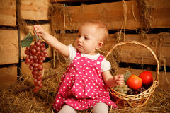 Little girl is sitting on pile of straw with grape Stock Images