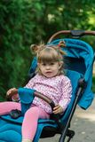 Little girl is sitting in a pram in a beautiful park. Stock Photos