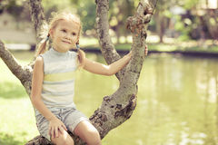 Little girl sitting on tree in the park Stock Photo