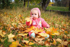 Little girl sitting on yellow autumn leaves Stock Image