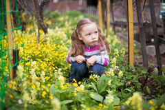 Little girl sitting in yellow flowers in spring garden Stock Image