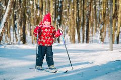 Little girl ski in winter nature, active lifestyle. And seasonal sport stock photo