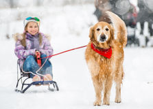 Little girl with sledge and dog Royalty Free Stock Image