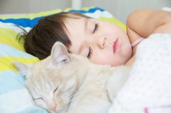 Little girl sleep with cat, favorite pet lying on child chest, Interactions between children and Cat. S royalty free stock images