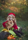 A little girl with a small red dog in the autumn forest sitting on a log next to pumpkins. Autumn photography.