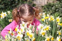 Little girl smell flower royalty free stock image