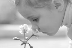 Little girl smell flower. Over defocused background. Black-and-white variant Stock Photos