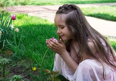 Little girl smell red tulip flower at spring time.  stock photo
