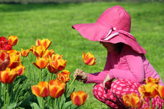 Little girl smell tulip flower Royalty Free Stock Image