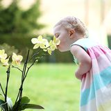 Little girl smelling beautiful flowers royalty free stock photo