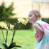 Little girl smelling beautiful flowers Stock Photos