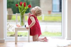 Little girl smelling beautiful tulips Stock Image