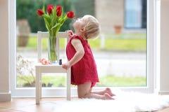 Little girl smelling beautiful tulips stock image