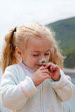 Little girl smelling chamomile Stock Photography