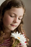 Little girl smelling daisies Royalty Free Stock Photo