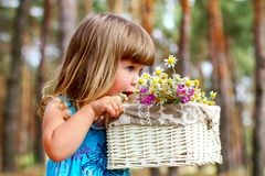 Little girl smelling a daisy in a summer forest Stock Image