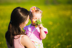 Little girl smelling field flowers Stock Photography