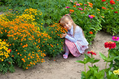 Little girl smelling the flower Royalty Free Stock Images