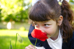 Little girl smelling a red poppy Stock Images