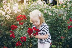 Little girl smelling roses in a summer Park royalty free stock photos