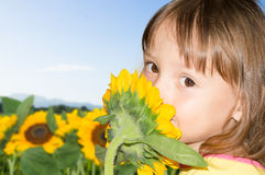 Little girl smelling a sunflower Royalty Free Stock Photography