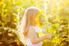 Little girl smelling a sunflower royalty free stock images