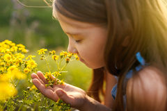 Little girl smelling a yellow flower Stock Photography