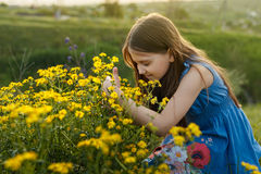 Little girl smelling a yellow flower Stock Photos