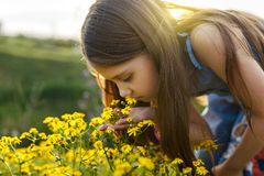 Little girl smelling a yellow flower Royalty Free Stock Image