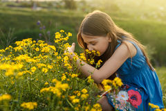 Little girl smelling a yellow flower Stock Photo