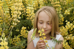 Little girl smelling yellow wildflowers Stock Photo
