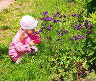 Little girl smells the flowers royalty free stock images