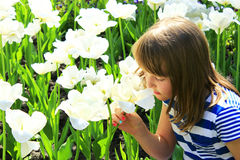 Little girl smells tulips on the flower-bed Royalty Free Stock Image