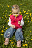 Little girl sniffing dandelion. Stock Photo