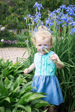 Little girl is sniffing flowers. Stock Photography